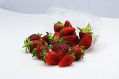Strawberry fruit isolated white Stock Images