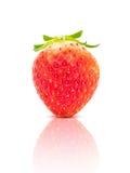 Strawberry fruit isolated on white background Stock Photos