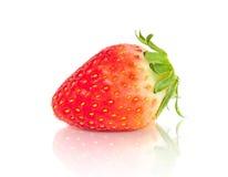 Strawberry fruit isolated on white background Stock Image