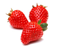 Strawberry fruit isolated on white background Royalty Free Stock Image