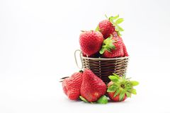 Strawberry fruit of life Stock Photography