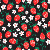 Strawberry fruit nature pattern. Seamless red strawberry pattern background. Vector nature illustration Royalty Free Stock Photos