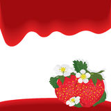 Strawberry Fruit Red Wave Card Royalty Free Stock Photography