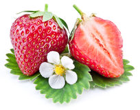 Strawberry fruit with slice and flower. Royalty Free Stock Images