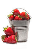 Strawberry. Fruit in small metal pail on white background stock images