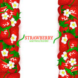 Strawberry fruit vertical seamless border. Vector illustration card top and bottom Fresh red beries for design tea, ice Royalty Free Stock Photos