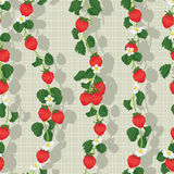 Strawberry fruit vertical seamless pattern Stock Photo