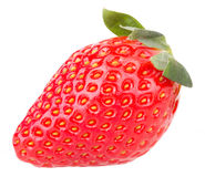Strawberry fruits Stock Photos