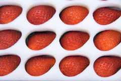 Strawberry fruits Stock Images