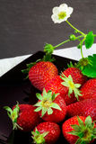 Strawberry fruits over black plate Royalty Free Stock Image