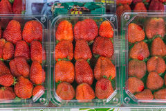 Strawberry fruits in transparent plastic packaging Royalty Free Stock Photo