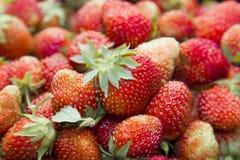 Strawberry - full frame stock images