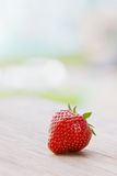 Strawberry in the garden Royalty Free Stock Image