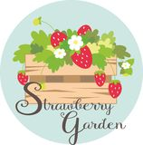 Strawberry Garden Royalty Free Stock Image