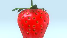 Strawberry. The garden strawberry is a widely grown hybrid species of the genus Fragaria stock photography