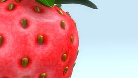 Strawberry. The garden strawberry is a widely grown hybrid species of the genus Fragaria royalty free stock photo
