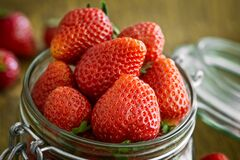 Strawberry in Glass Fido Jar Stock Image
