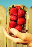 Strawberry in glass in hand Royalty Free Stock Images