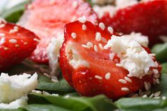 Strawberry and goat cheese closeup in vitamin salad Royalty Free Stock Photos
