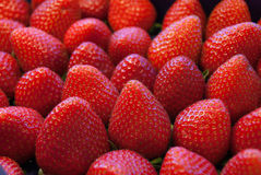 Strawberry. Gorgeous strawberry for background and not only Royalty Free Stock Photography