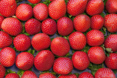 Strawberry. Gorgeous strawberry for background and not only Royalty Free Stock Photos