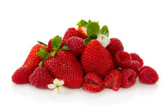 Strawberry  with green leaf and flower isolated on white background. Royalty Free Stock Photos