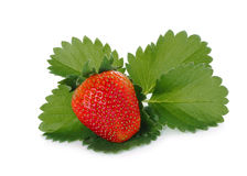 Strawberry with green leaf isolated on white Stock Photos