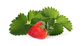 Strawberry with green leaf isolated on white Stock Photo