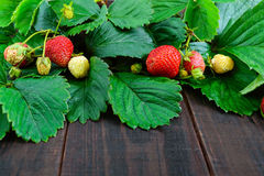 Strawberry and green leaves on a dark wooden board. Food background Royalty Free Stock Images