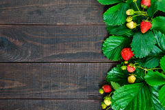 Strawberry and green leaves on a dark wooden board. Food background Royalty Free Stock Photo