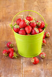 Strawberry in a green metal bucket on wood Stock Image
