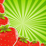 Strawberry And Green Sunburst Stock Photography