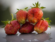 Strawberry on a grey background Royalty Free Stock Photos
