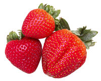 Strawberry group on white Royalty Free Stock Image
