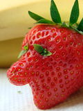 Strawberry guy. Unique-shaped strawberry with natural eye extention and an unshaved feel Royalty Free Stock Photos