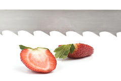 Strawberry halves and saw-blade Royalty Free Stock Image