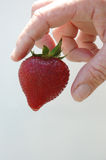 Strawberry and hand. Hand picking up a strawberry royalty free stock photos