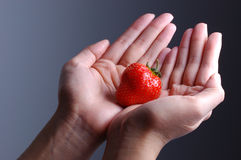 Strawberry in hand Royalty Free Stock Images