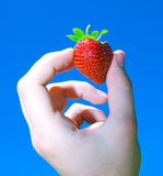 Strawberry in the hand Royalty Free Stock Photos
