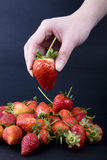 Strawberry with hand Royalty Free Stock Photography