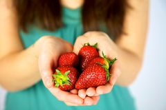 Strawberry in hands. Beautiful strawberries in models hands Stock Photography