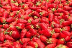 Strawberry heap on open market Stock Image