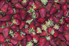 Strawberry. Heap on open market as background Stock Images
