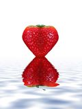 Strawberry Heart. Heart shaped strawberry with refection Stock Image