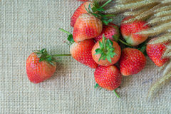 Strawberry hemp bags. Close up strawberry on a hemp bags with flowers Royalty Free Stock Photos