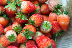 Strawberry hemp bags. Close up red strawberry on a basket Stock Photo