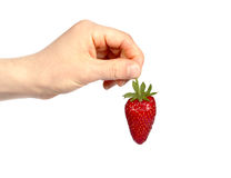 Strawberry holding hand Royalty Free Stock Images