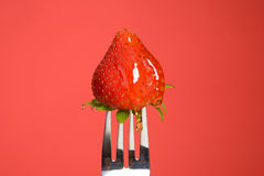 Strawberry and Honey Royalty Free Stock Photography