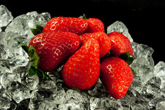 Strawberry on the ice on black background berry fruits Stock Photography
