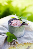 Strawberry ice cream Stock Images